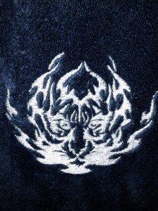 Broderie  peignoir  pour noel dans broderies IMG_20111221_1704391-225x300